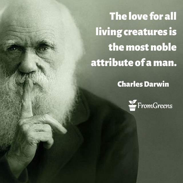 Charles Darwin Celebrity Quotes