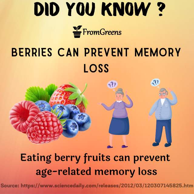 Did you know facts berries - Evidence based