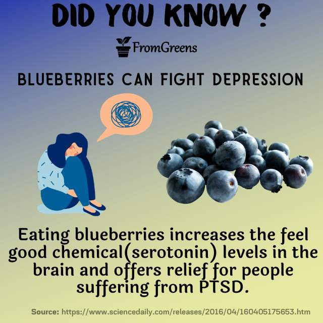 Did you know facts blueberries - Evidence based