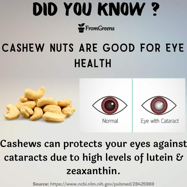 Did you know facts cashew nuts - Evidence based