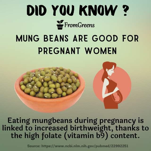Did you know facts mung beans - Evidence based