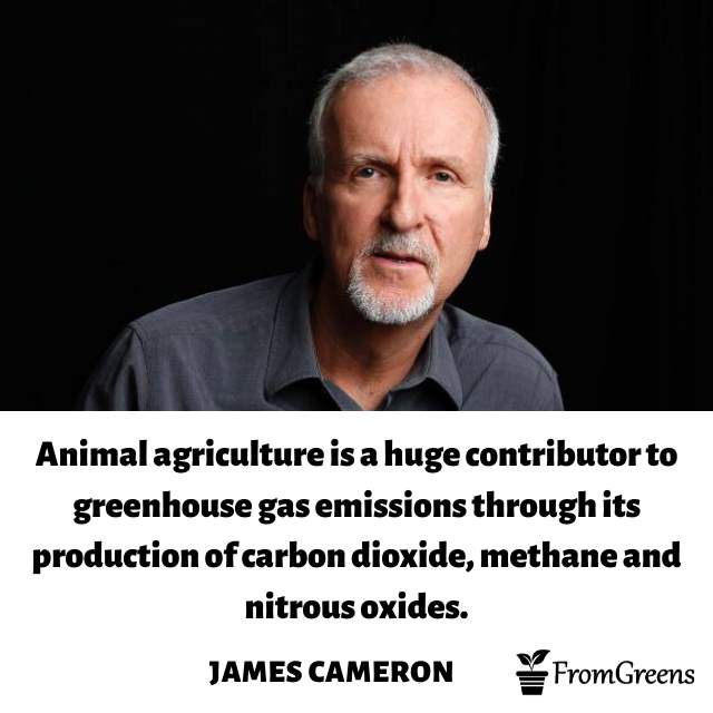 James Cameron Celebrity Quotes on climate change