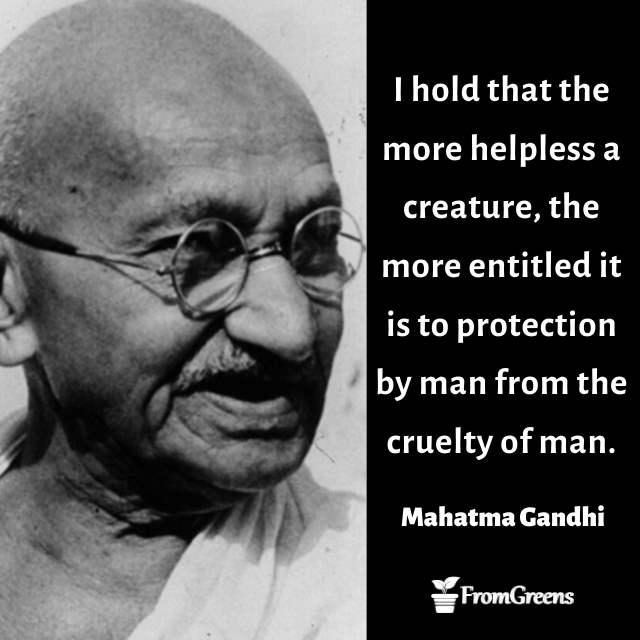 Mahatma Gandhi Celebrity Quotes
