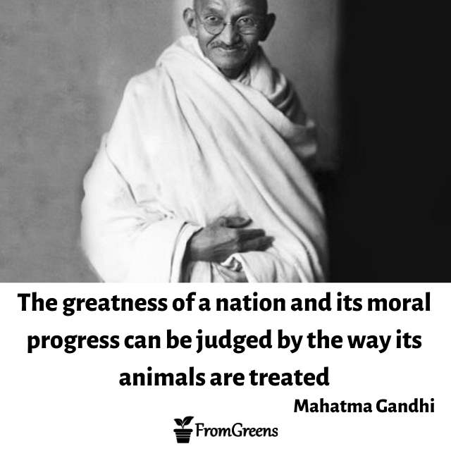 Mahatma Gandhi Celebrity Quotes on animal rights