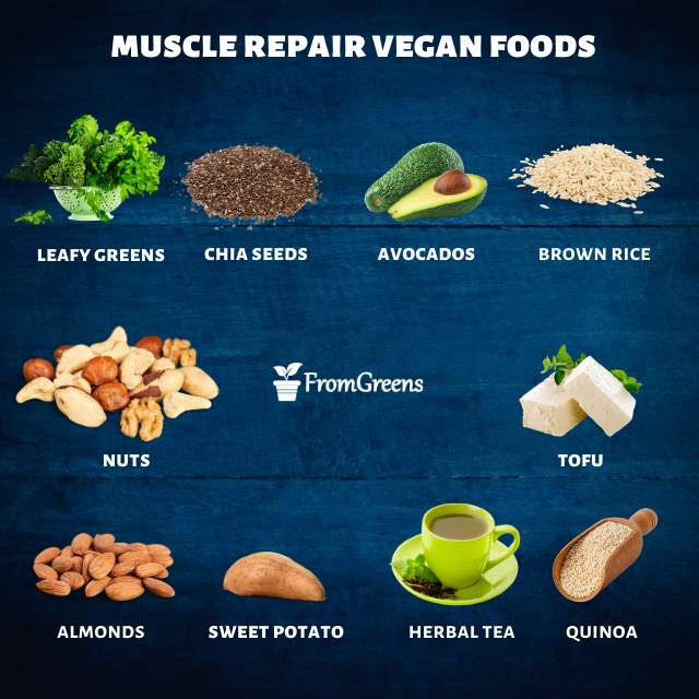Vegan foods list for muscle repair - Evidence based
