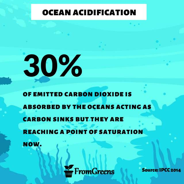 Ocean acidification quotes - Evidence based