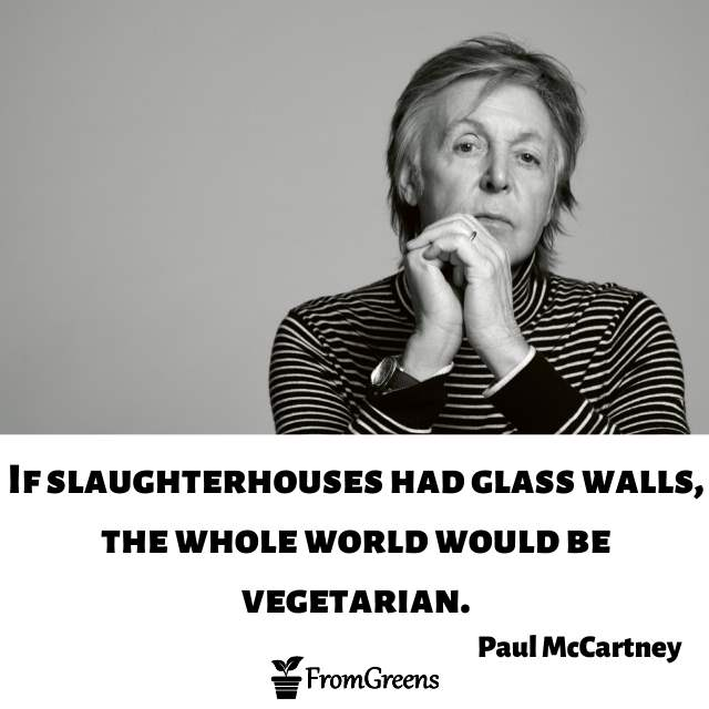 Paul McCartney Celebrity Quotes