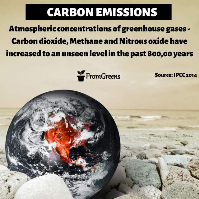 Carbon emissions facts - Evidence based