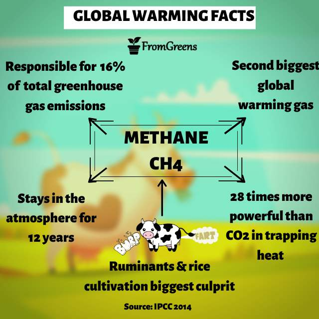 Global warming artwork methane emissions - Evidence based