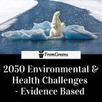 2050 Environmental and health challenges