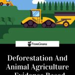 Deforestation facts article