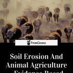 Soil erosion facts article