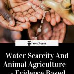 Water scarcity facts article