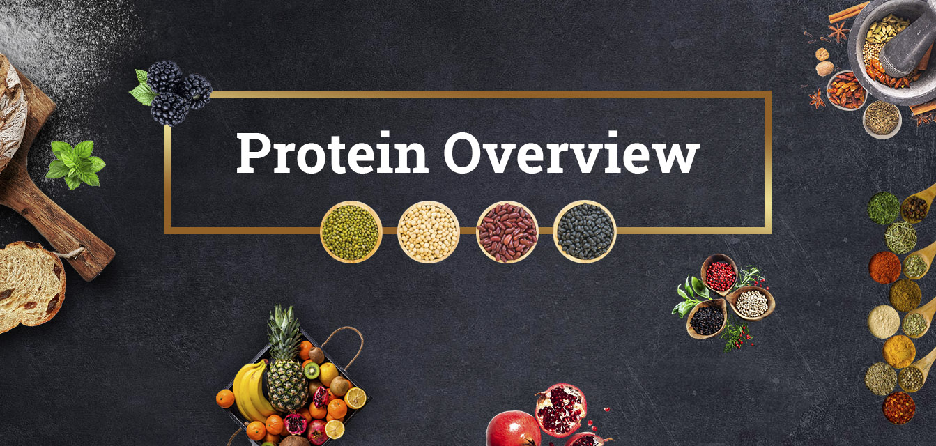 vegan sources of protein chart